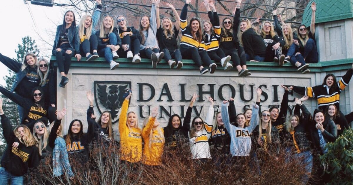 The Best Credit Cards for Dalhousie University Students