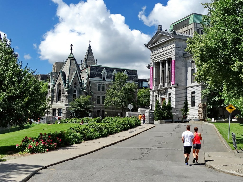 The Best Credit Cards for McGill University Students