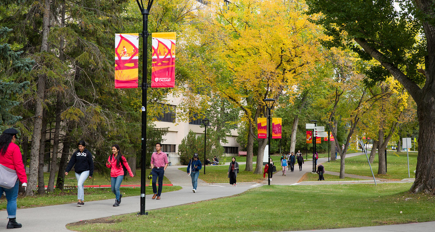 The Best Credit Cards for University of Calgary Students
